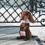 Мягкая игрушка Такса Эмма 20см orange toys
